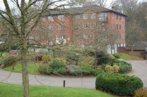 Apartment to rent in Haywards Heath