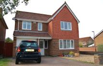 Detached home to rent in Baylis Crescent