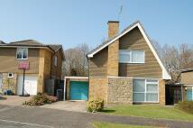 Pinehurst Detached house to rent