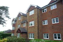 Flat to rent in Suva Court, London Road...