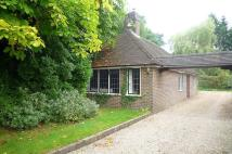 2 bedroom Bungalow in Little Coombe Cottage...