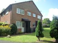1 bed property to rent in Maple Drive...