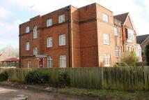 Studio flat to rent in McGechie House...
