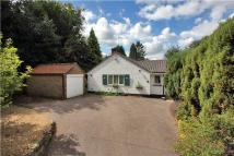 Detached Bungalow in Shenden Way, Sevenoaks...