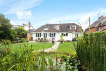 4 bed Detached house in Rosemary Lane, Rowledge...