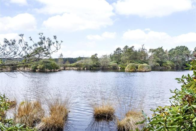 The Flashes Pond