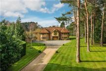 5 bed Detached house in Cobbetts Ridge, Farnham...