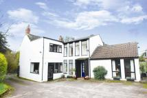 Equestrian Facility home for sale in Caddington Common...