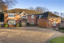 6 bedroom Detached property in Sauncey Wood, Harpenden...