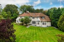 6 bedroom Detached house for sale in Square Drive, Haslemere...