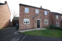 Detached property to rent in Adams Close, Hartshorne...