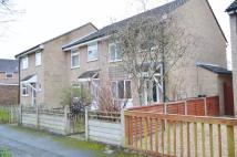 3 bed semi detached house to rent in Woodpecker Close...