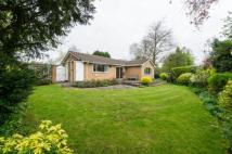 Detached Bungalow in Field House Drive...