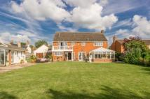 5 bed Equestrian Facility house for sale in Yew Tree House...