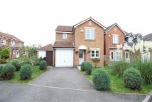 Detached house in Cedar Drive, Jarrow