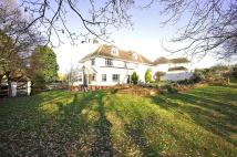 7 bed Detached house in Lake Road, Nazeing, EN9