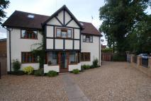 6 bed Detached home in Western Road, Nazeing...