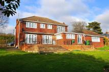 4 bed Detached house in Beaumont Road, EN10