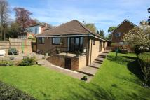 3 bed Detached Bungalow for sale in Hollies Orchard...