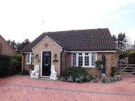 Detached Bungalow in Old Priory Gardens...
