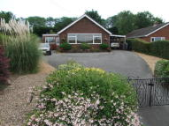 4 bed Detached Bungalow for sale in Main Road, Yoxford