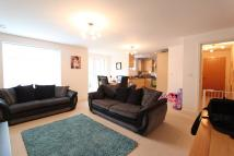 Ground Flat to rent in Robinson Street...