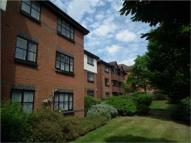 Ground Flat for sale in Wildbank Court, Woking