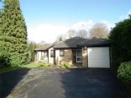 Oak End Way Detached Bungalow to rent