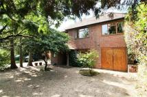 Detached home in Lynwood Close, Woking...