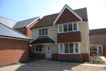 Abbotswood new house to rent