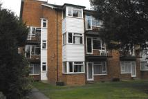 Alexander Court Flat to rent