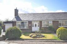 2 bed Semi-Detached Bungalow for sale in Fielding Lane...
