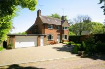 Detached property to rent in Lynden Lea...