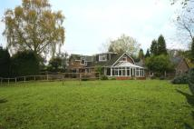 4 bed Detached home to rent in Vine Cottage, Fairoak...
