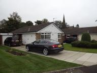 3 bed Detached Bungalow to rent in Hunt Fold Drive...
