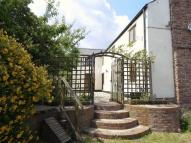 Clayhill Cottage to rent