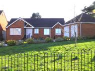 3 bedroom Detached Bungalow in The Gallops, Hempsted...
