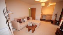 Flat in Cadet Close, COVENTRY...