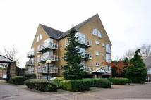 1 bedroom Flat in Eleanor Close...