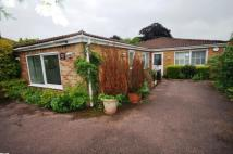 3 bed Bungalow for sale in Lovers Walk, Wells...