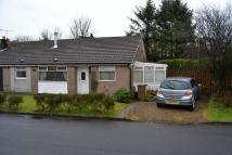 semi detached property for sale in Balfour Avenue, Beith