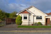 3 bed Detached Bungalow for sale in Mcluckie Drive...