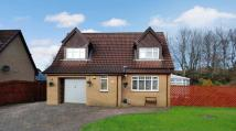 Detached home in Wingfaulds Avenue, Dalry