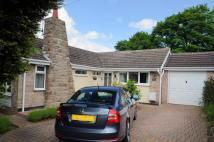 Bungalow for sale in Homecroft Drive...