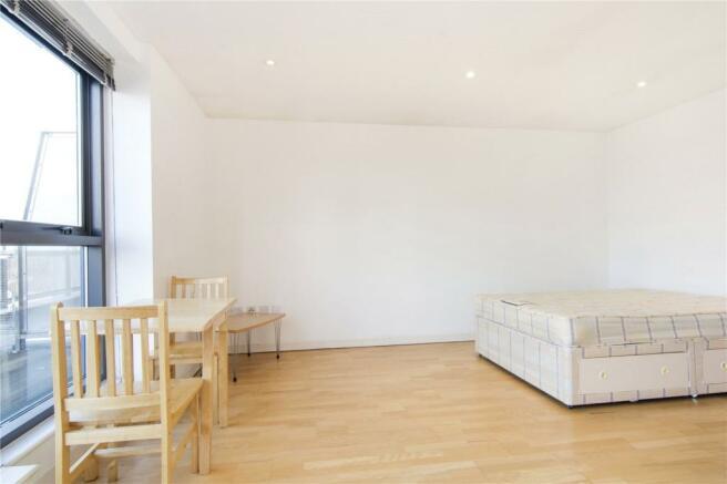 Living/ Bedroom Area