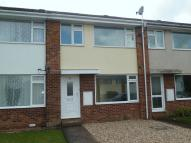 3 bed Terraced house to rent in Willsdown Road, Exeter