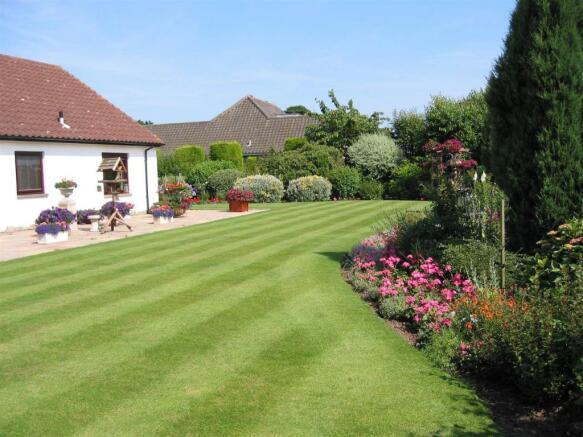 rear garden in