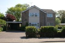 4 bedroom Detached home in DISS