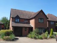4 bed Detached property to rent in DISS