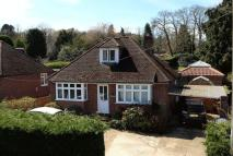 3 bedroom Detached Bungalow for sale in Witley